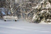 Winter auf der Pfuhler Höhe
